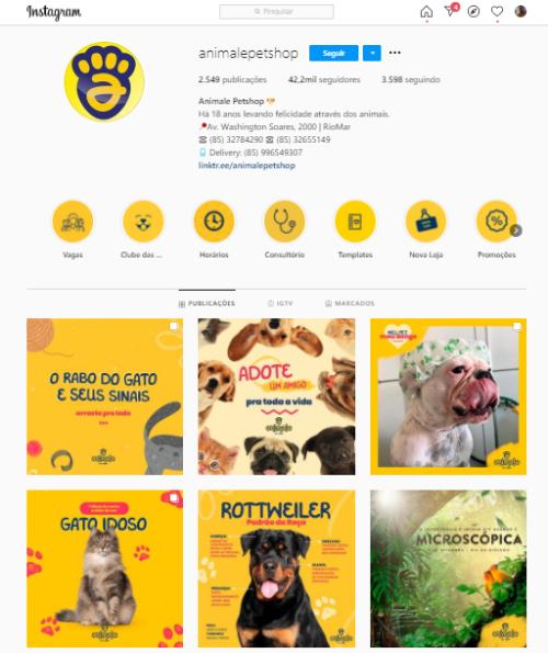 Instagram para pet shop