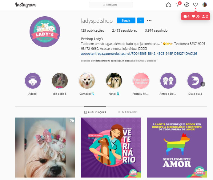 Marketing digital para pet shop