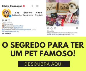 curso instagram para pets famosos